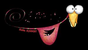 Wazo rose sans 2014